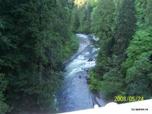پارک جنگلی کپیلانو ونکوور